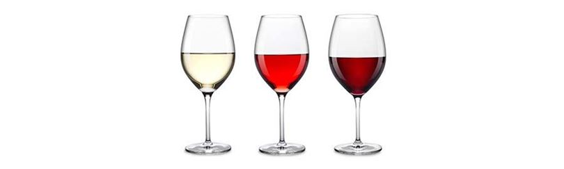 טעימת יין, המדריך למתחיל