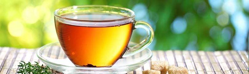 המדריך המלא לחובבי תה